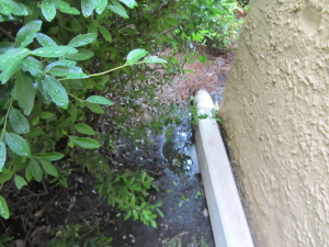 Example of inadequate downspout with pooling water at foundation.